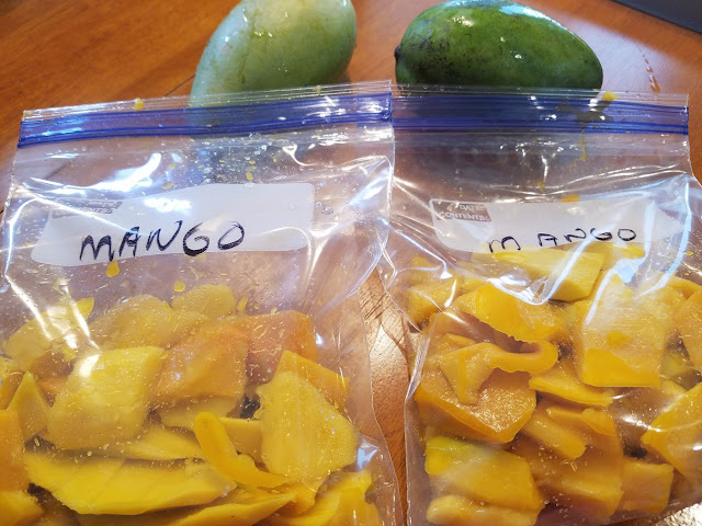 a tutorial on how to freeze and store an abundance of fresh mango and ideas for later uses