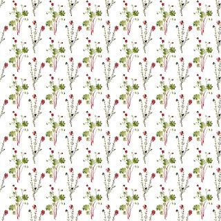 wildflower artist paper background download