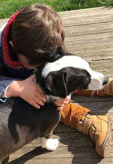 enfant assis qui caline un chien