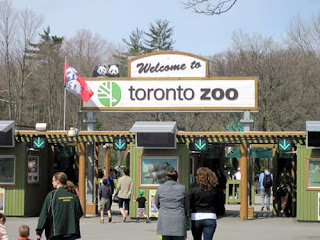 Welcome to Toronto Zoo.