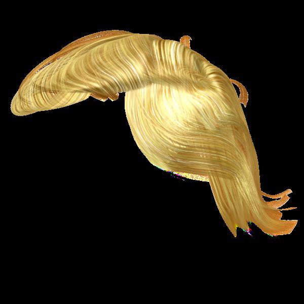 Trumps Hair - 3D Model