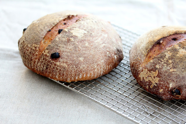 Sourdough bread with walnuts and raisins