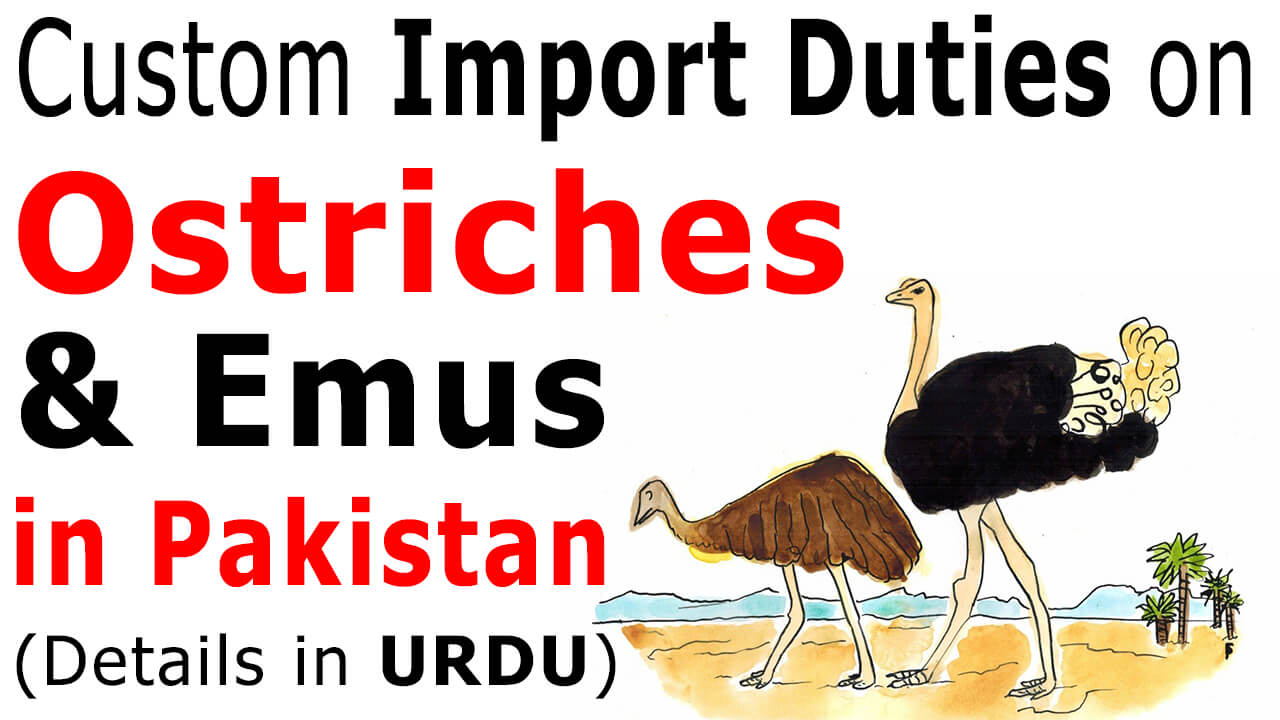 Custom-Import-Duty-on-Ostriches-and-Emus-in-Pakistan