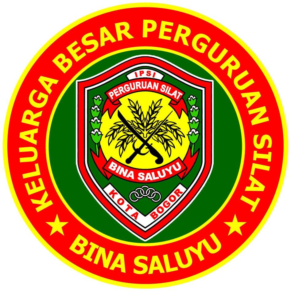 profil perguruan silat perguruan silat bina saluyu