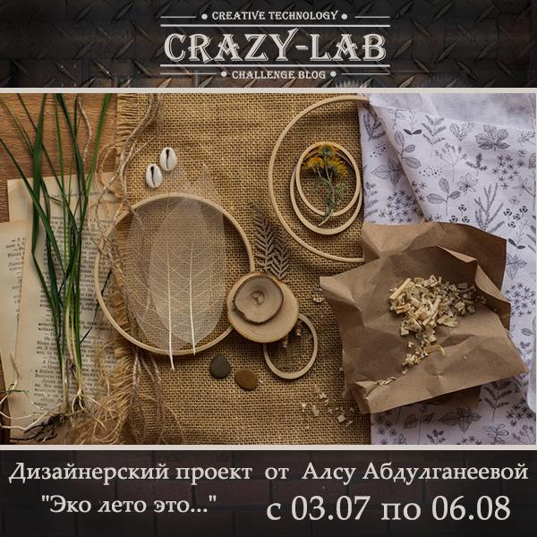 Совместный проект в блоге Crazy Lab