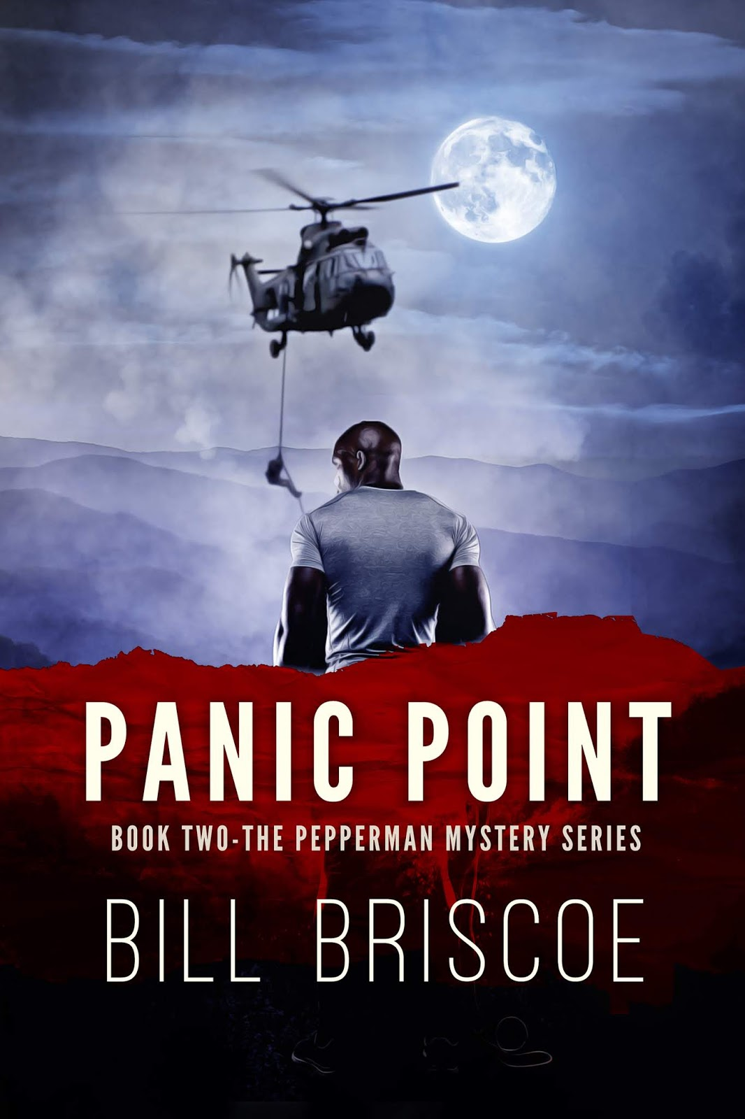 Panic Point book cover
