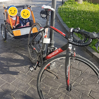 Stolen Bicycle - Wilier La Triestina