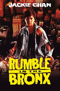 Rumble in the Bronx Poster