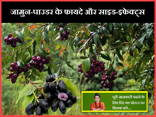 Jamun-Powder Benefits and Side-Effects