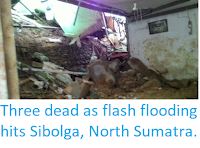 http://sciencythoughts.blogspot.com/2018/03/three-dead-as-flash-flooding-hits.html