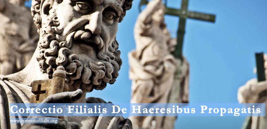 """26a733b4408254 """"Amoris laetitia""""   la correction filiale adressée au pape François par des  laïcs et des théologiens catholiques"""