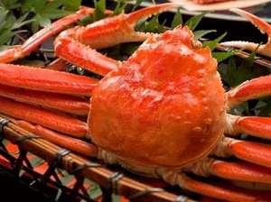 4ec12d8f927cd 香住蟹と津居山蟹の両方が味わえる蟹尽くしの料理プランです。かに鍋(自家製ポン酢)、かに刺し、炭火焼きがに、甲羅味噌、せこがに(ボイル一匹)、香住蟹(ボイル  ...