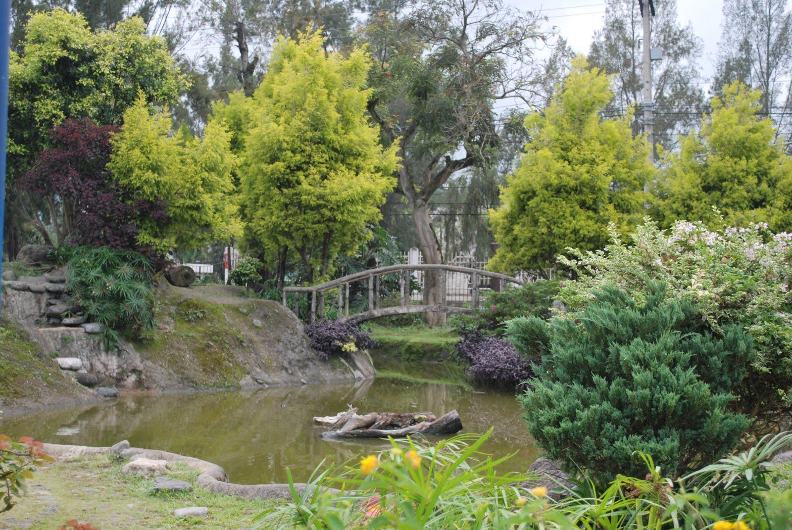 Paulo's Adventures: Baguio Travel June 2011