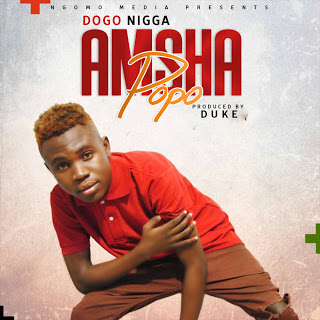 Download Audio | Dogo Nigga - Amsha Popo (Singeli)