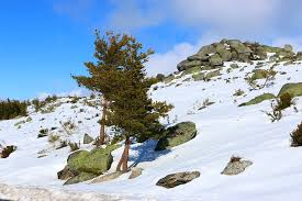Serra da Estrela Inverno - Portugal