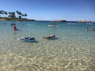 Hawaii Beaches with Kids