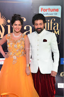 Celebrities sizzling Exclusive Pics at IIFA Utsavam Awards 2017  Day 2  HD Exclusive 17.JPG