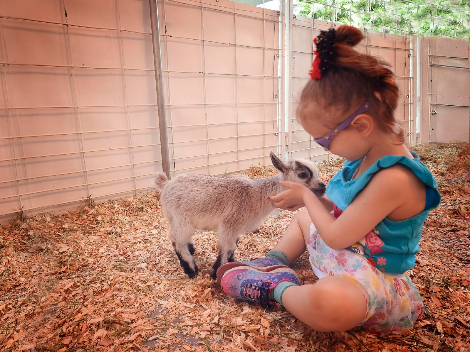 bond between animals and kids
