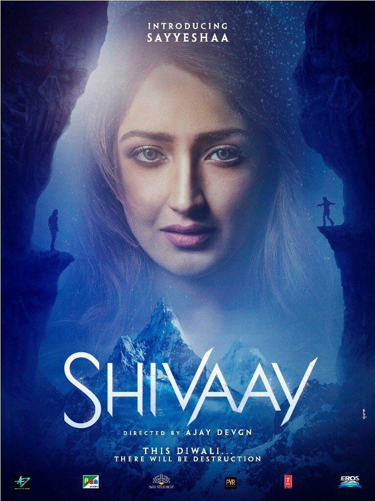 Shivaay (2016) Hindi Movie DVDRip Download