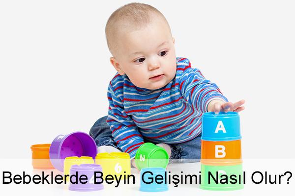 Bebeklerde Beyin Gelişimi Nasıl Olur?