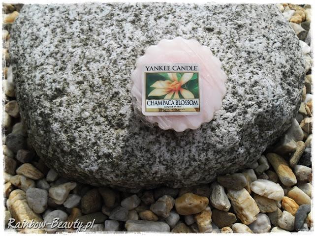 champaca-blossom-yankee-candle