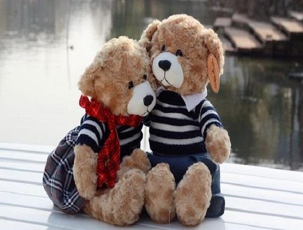 Cute Teddy Bear Couple Images
