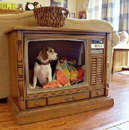 antigua televisión reconvertida en cama de mascota