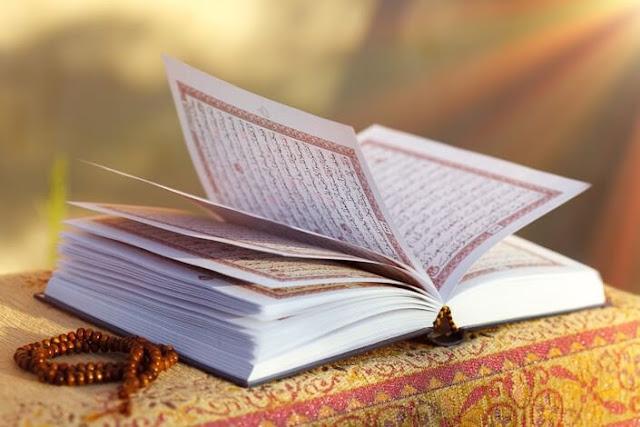 Read Online Quran PDF With Urdu Translation Tafseer Free Download