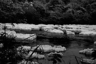 Espuma do Rio Tietê na Estrada dos Romeiros