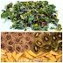 Trocknen & Dörren (Ernte konservieren und haltbar machen)