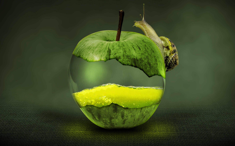 snail on green apple