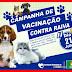 IBITIARA: CAMPANHA DE VACINAÇÃO CONTRA RAIVA ( DIA D 21 DE JULHO DE 2018)