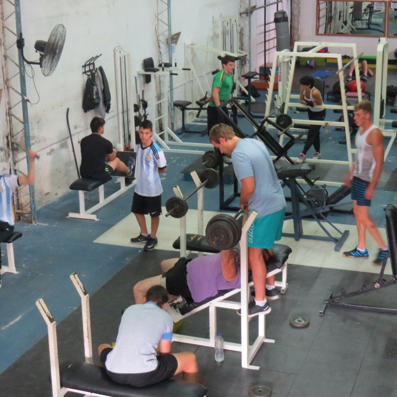 Darregueira noticias bulls gym la mejor forma de entrenar for Gimnasio gym forma