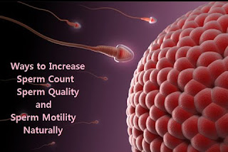 increase sperm motility