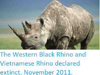 http://sciencythoughts.blogspot.co.uk/2011/11/western-black-rhino-and-vietnamese.html