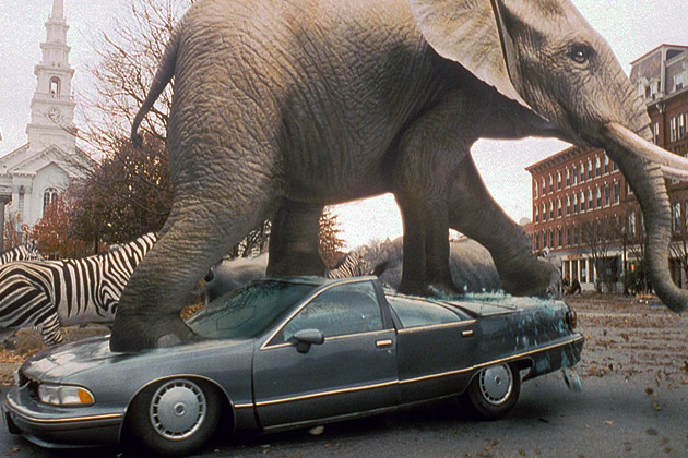 The Wmmvrrvrrmm Blog Large Animals On The Loose In 1995