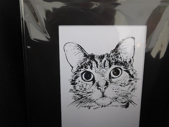 Meow at Lakewood Arts Festival