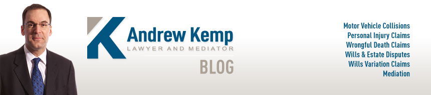 Andrew Kemp, Lawyer and Mediator