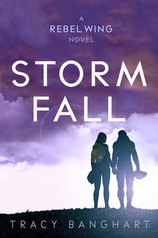 Storm Fall by Tracy Banghart