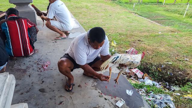 Tegallalang - Bali