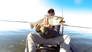 fishing for redfish, snook, tarpon, snapper