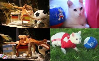 piala dunia 2018,RAMALAN KEPUTUSAN PIALA DUNIA 2018, tentang kucing achilles, ramalan kucing achilles keputusan piala dunia 2018,info kucing achilles