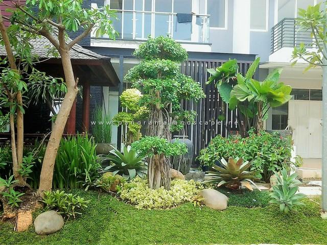 Taman Tropis Depan Rumah