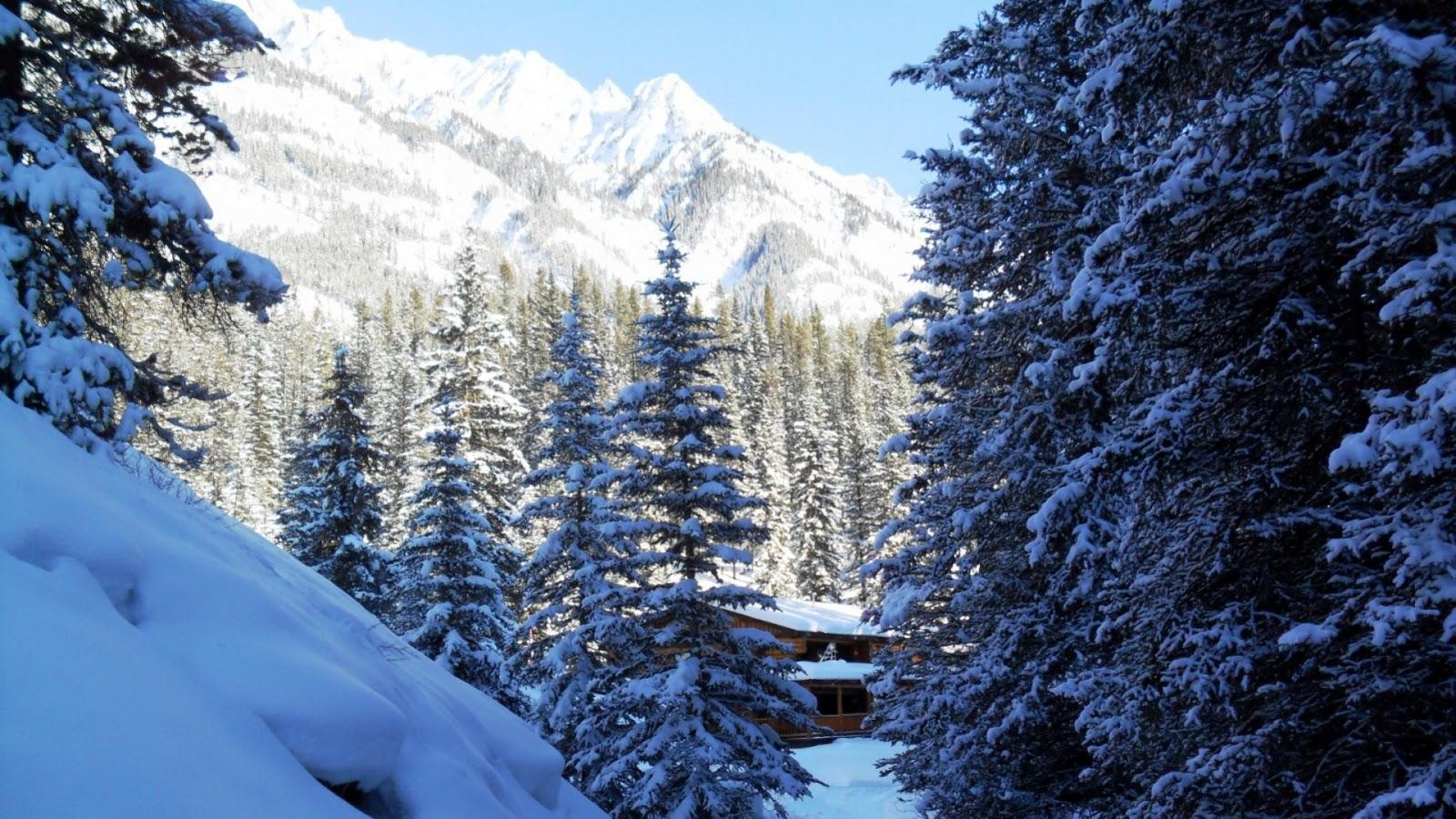 Potentes Montañas Nevadas Fondos De Pantalla: Fondo De Pantalla Paisajes Vistas De Montañas Nevadas