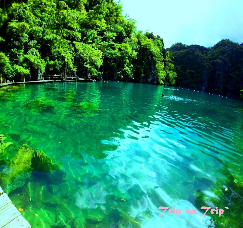 Coron Ultimate Island Tour - The Wonderful Gifts of Nature