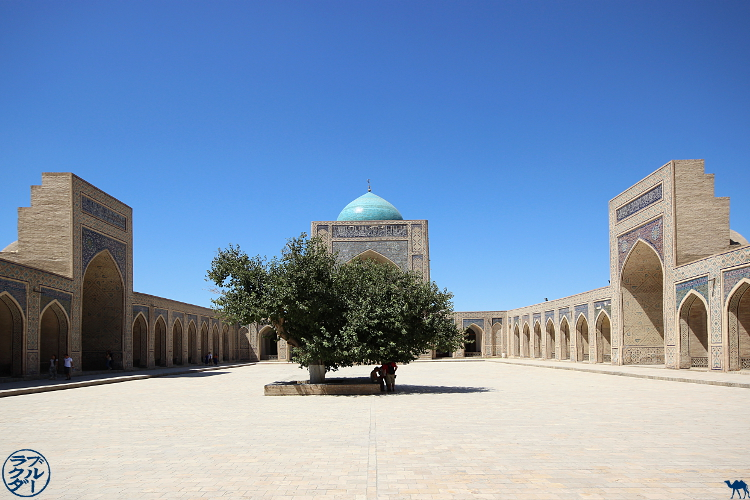 Le Chameau Bleu - Blog Voyage Ouzbékistan Boukhara - Mosquée Kalan