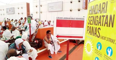 Calon Haji Menggigil Kemudian Muntah Ketika Keluar Gate Bandara Haji Jeddah, Ada Apa?