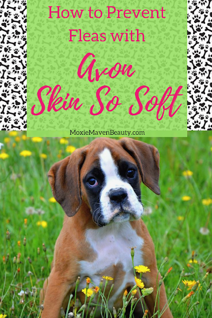 How To Prevent Fleas with Avon Skin So Soft. MoxieMavenBeauty.com