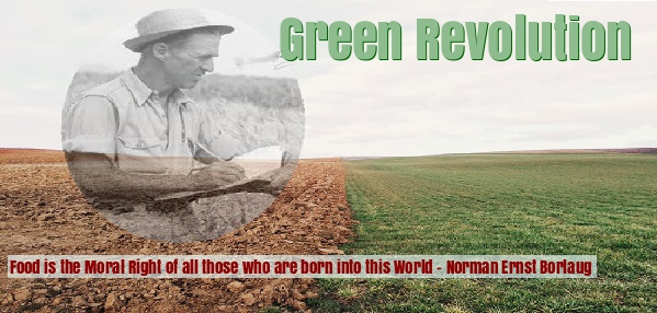 Norman e borlaug is the father of green revolution