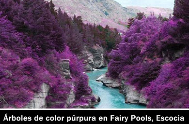 valle-colores-falso